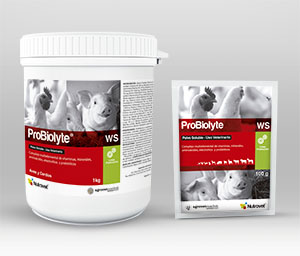 Probiolyte® WS