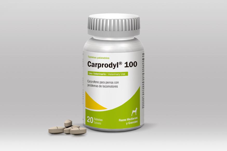 carprodyl-100.jpg